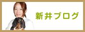 新井ブログ